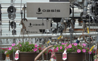 Maximize Water Quality and Efficiency in the Greenhouse