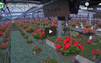 Greenhouse Product News – OASIS: Watering By Weight