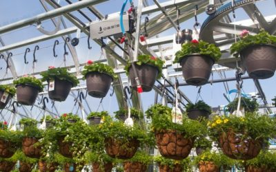 This Irrigation System Saves Labor and Water
